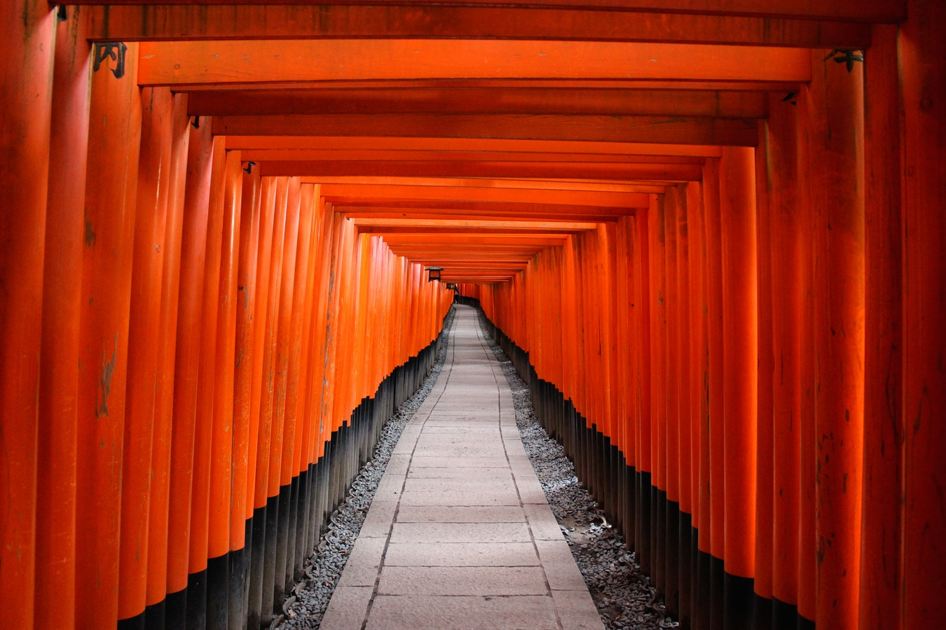A long tunnel of orange posts, with black bases