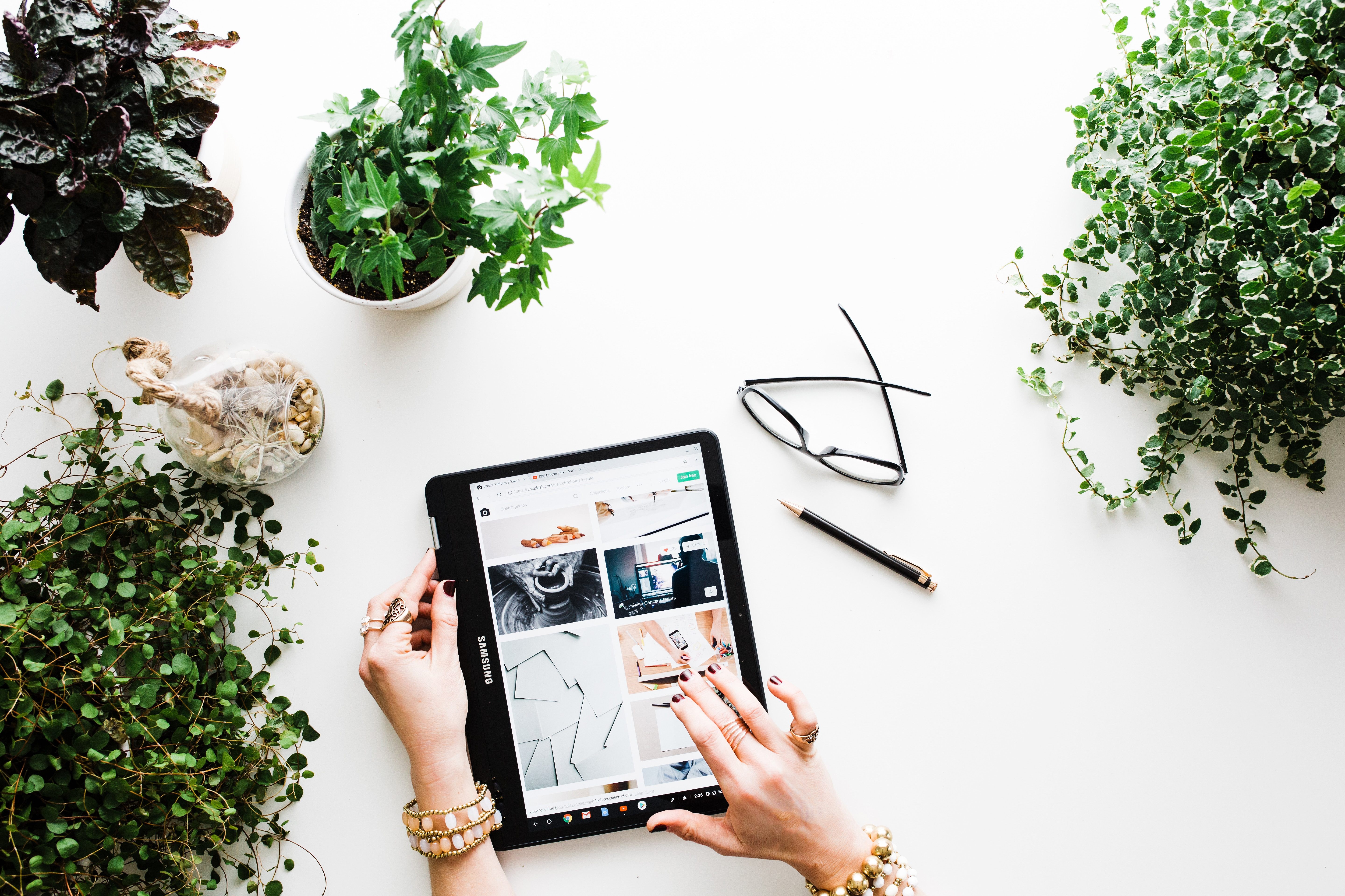 Women browsing images on a tablet, while surrounded by potted plants