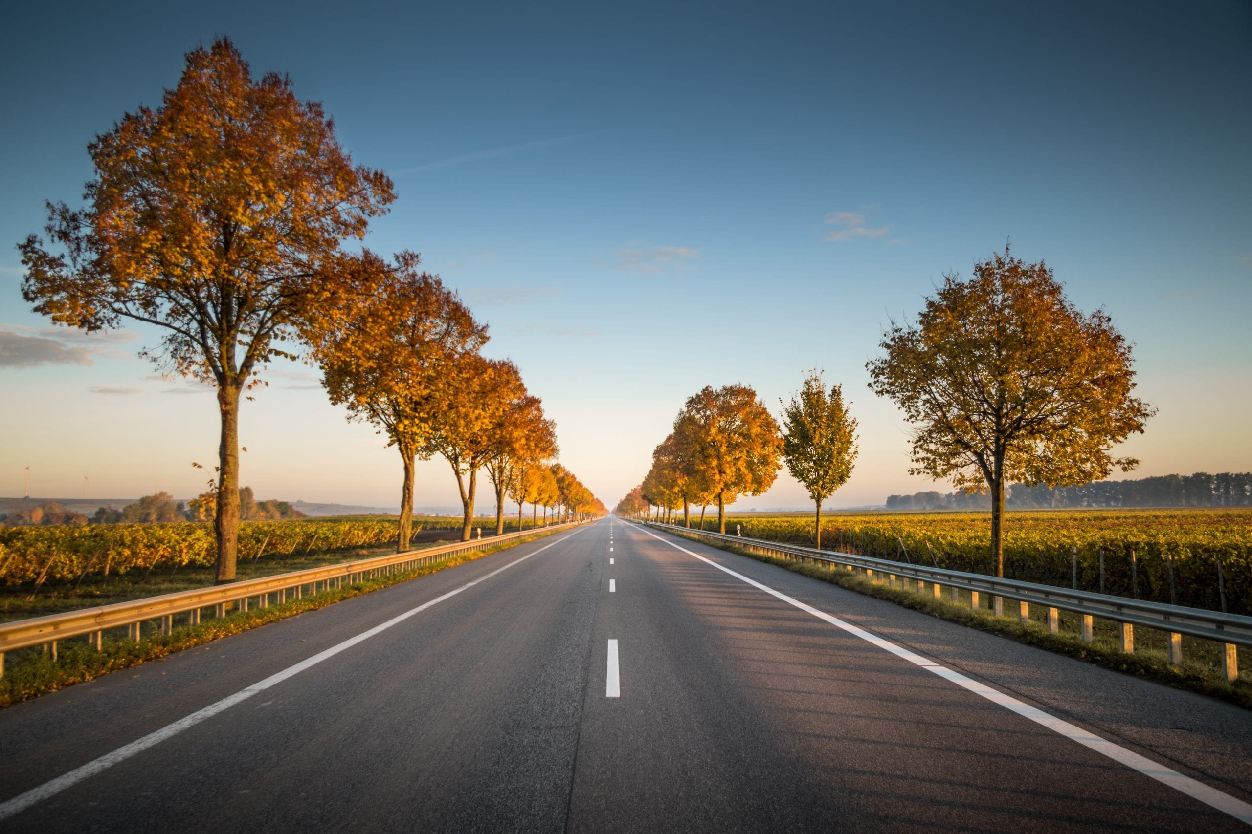 A long road signifying ecommerce progression