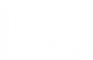 professional-books